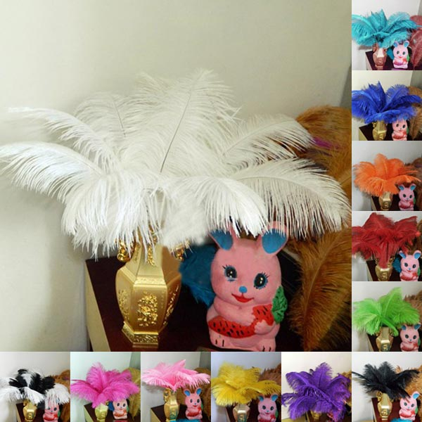 10PCS Multicolor Natural Soft Ostrich Feathers Wedding Decor