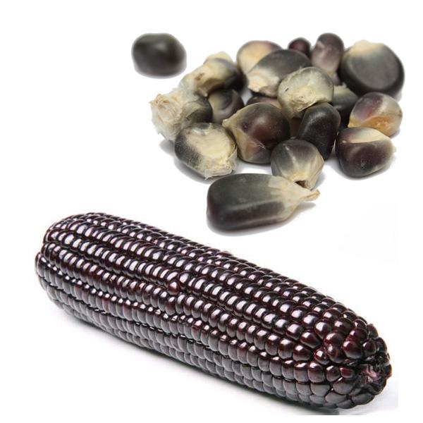 20 Seeds Black Corn Seeds Vegetable Fruit Plants Seeds