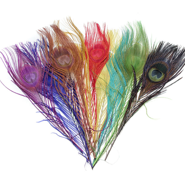 10pcs Beautiful Natural Long Peacock Tail Feathers