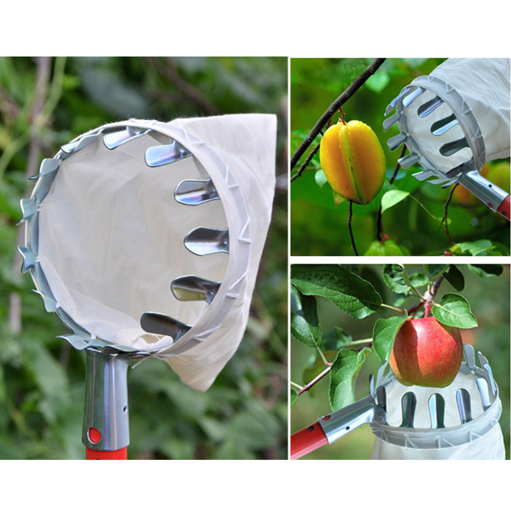 Fruit-Picker-Head-Basket-Gardening-Fruits-Catcher-Picking-Tool-for-Apple-AUD thumbnail 8