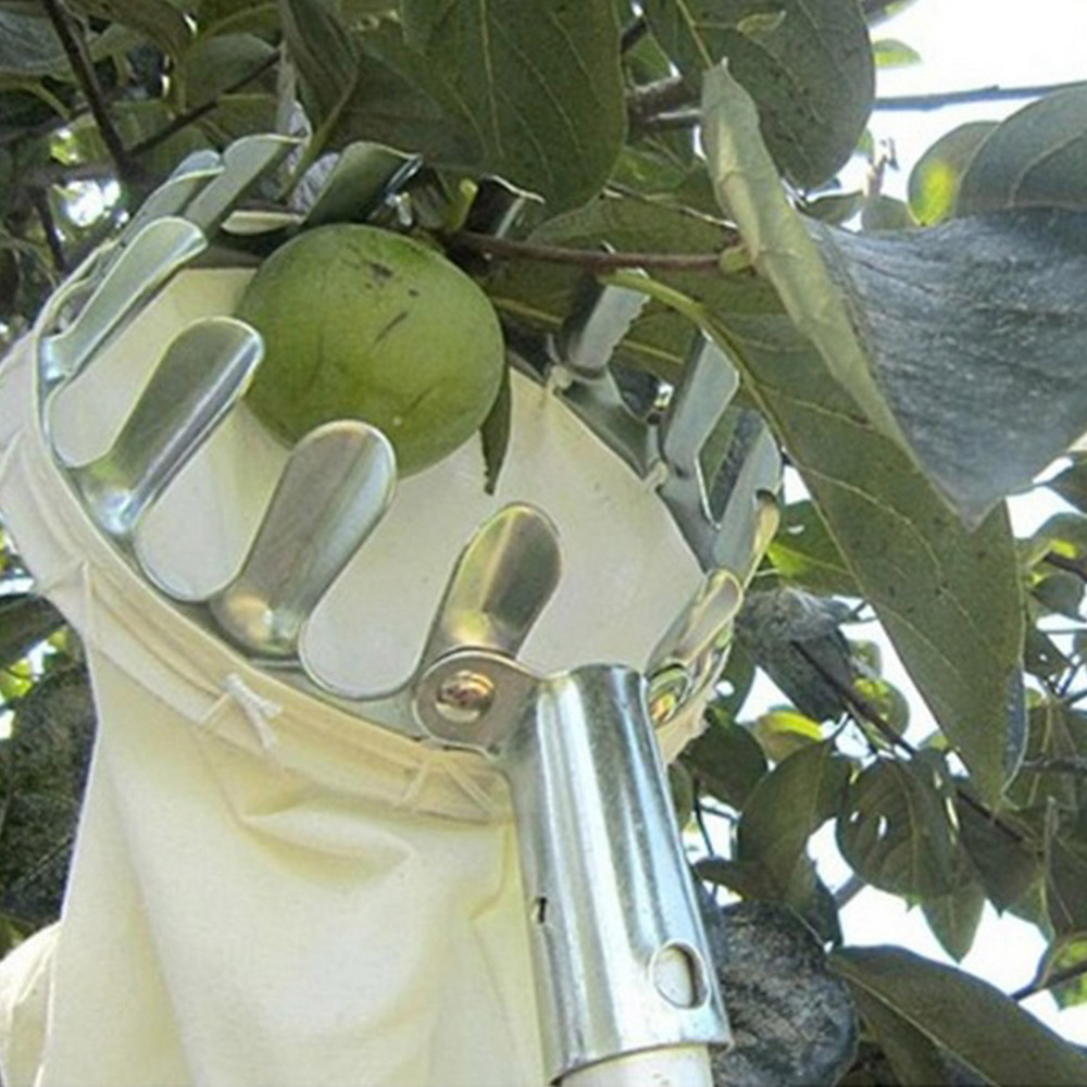 Fruit-Picker-Head-Basket-Gardening-Fruits-Catcher-Picking-Tool-for-Apple-AUD thumbnail 7