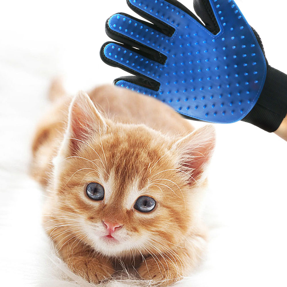 Dog And Cat Grooming Manual