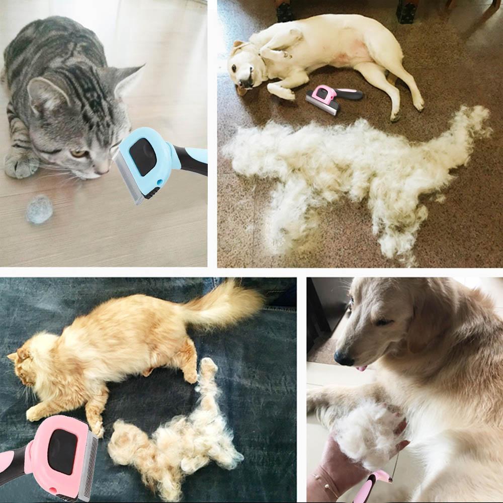Dematting Dog Grooming Information